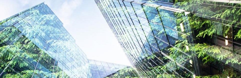 Nachhaltige Kapitalanlagen - Eintritt in eine neue Dimension!